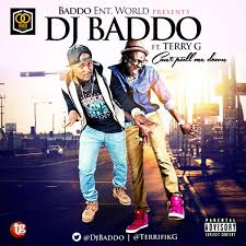 Download DJ Baddo – Can't Pull Me Down: ft. Terry G